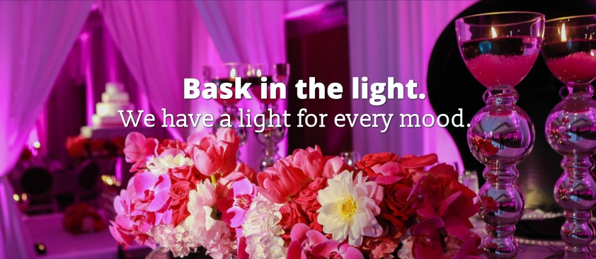 Elite Wedding Lighting